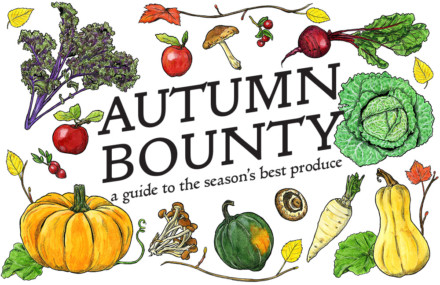 Autumn Bounty